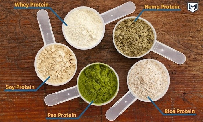 Five scoops of protein powder placed in a circle, labeled whey protein, soy protein, pea protein, rice protein, and hemp protein.